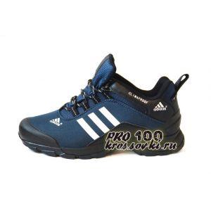 Мужские кроссовки Terrex синие